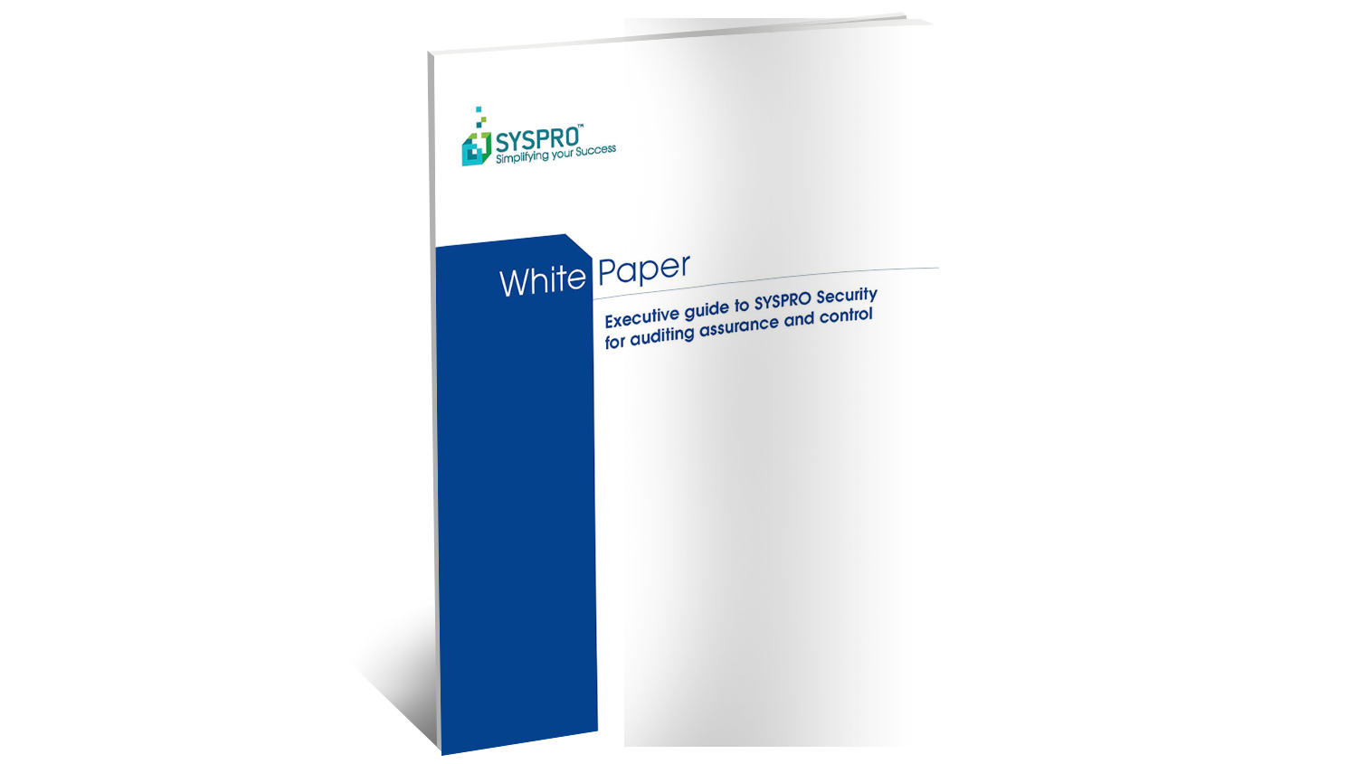 SYSPRO Security for Auditing Assurance and Control White Paper