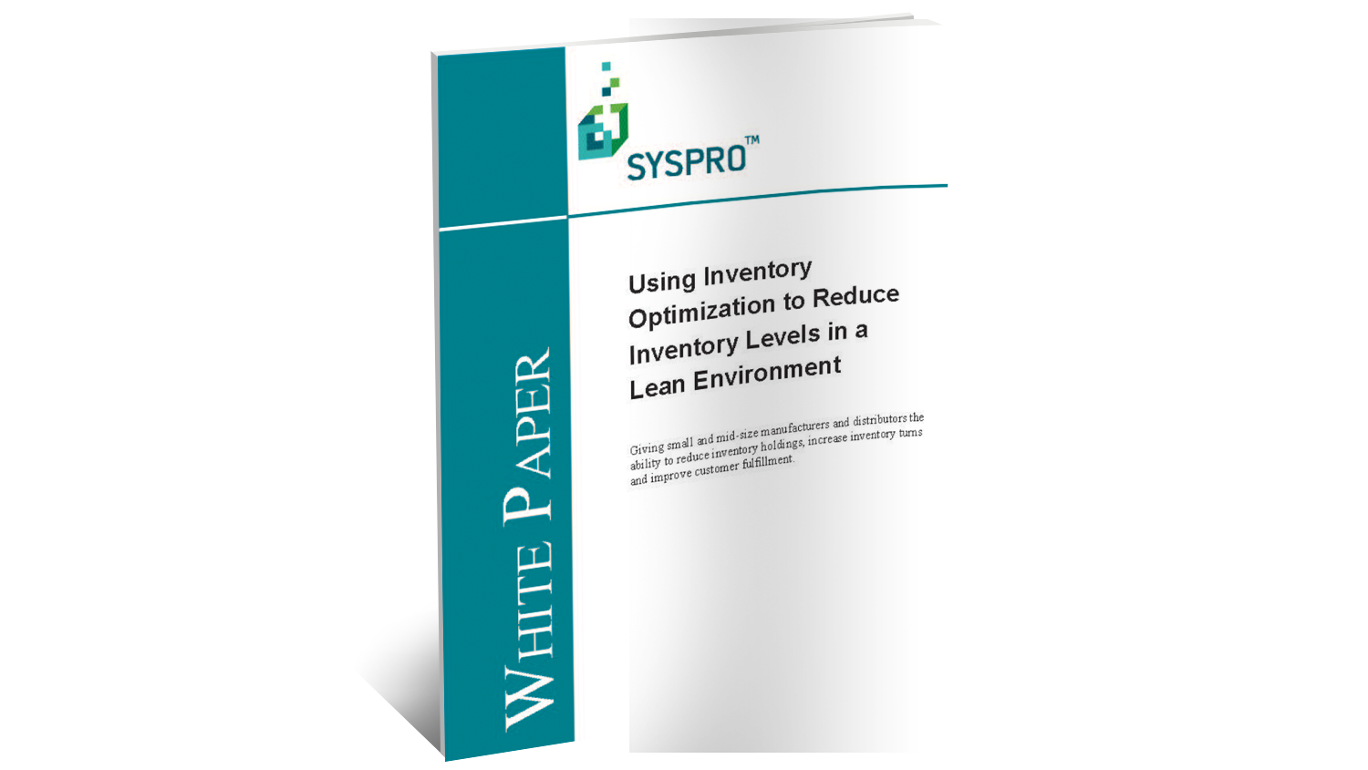Inventory Optimization White Paper
