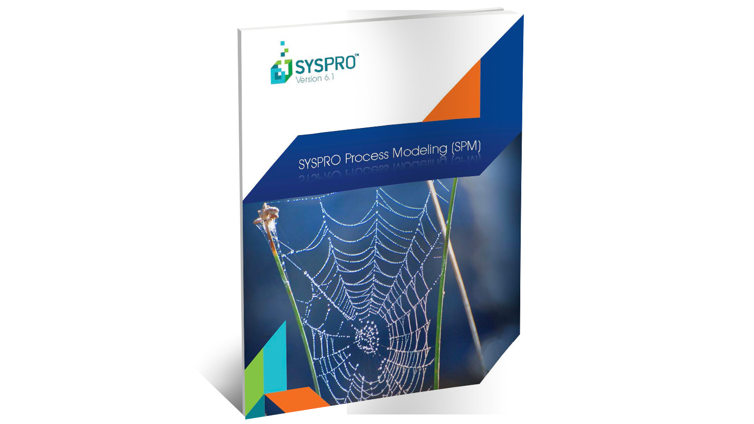 SYSPRO Process Modeling Brochure