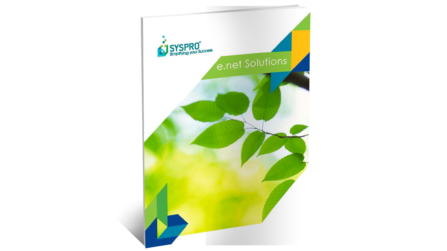 SYSPRO e.net Solutions Brochure